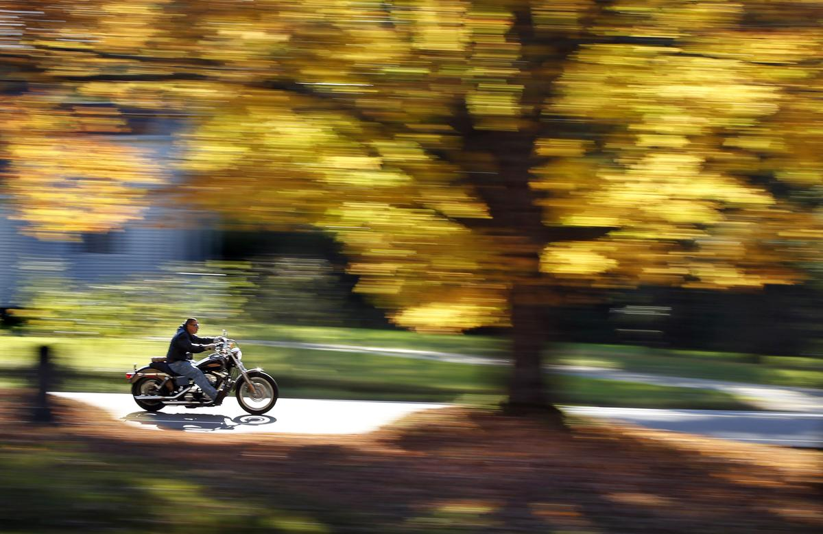 A motorcyclist cruises past a maple tree displaying its bright fall foliage, Oct. 6, in Freeport, Maine. (Robert F. Bukaty/Associated Press)