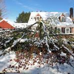 A late October snowstorm pounded several Western and Central Massachusetts communities.