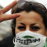 Demonstrators rallied today in Berlin, Germany in support of the Syrian opposition.