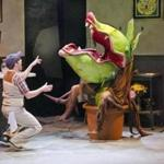 "Blake Pfeil as Seymour with the blood-thirsty plant Audrey II in ""Little Shop of Horrors."""