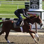 I'll Have Another has been working out at Belmont Park since May 20 in preparation for Saturday's Belmont Stakes.