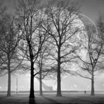 """Flushing Meadow"" is one of Philip Jones's nocturnal urban images."