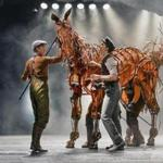 Though the horses in the play are operated by puppeteers who are plainly visible, after a while you almost forget they're there, a great testament to their skill.