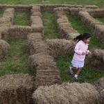 Tallie Wollen, 4, ran around a hay maze at Adams Farm near her home in Cumberland, R.I.