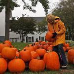 Susan West helped pile up pumpkins on the front lawn of the First Congregational Church in Chatham for a sale to benefit the Chatham Teachers Fund.