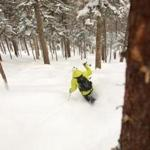 Sugarloaf in western Maine is among the New England ski areas known for its glades.