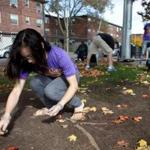 BU medical school student Deborah Lee participated in volunteer cleanup of Ramsay Park in Roxbury on Saturday.