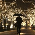 Holiday lights sparkled in the rain on the Commonwealth Avenue mall in Boston.