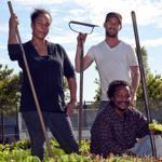 From left, Nataka Crayton-Walker, Greg Bodine, and Bobby Walker at a City Growers micro-farm in Dorchester.
