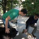 Michael Ross met Jay Mofenson and his dogs in the South End as Ross launched his effort to become mayor of Boston.