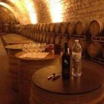 Wine gets its dry taste from being aged in oak barrels at Carmel wine factory in Israel.