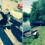 Five-month-old Rosie drove her owner's car into a pond Sunday.