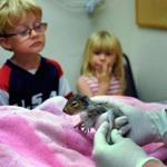 Cameron Leonard, 5, of Rockland, and his 3-year-old sister, Sarah, brought in a baby squirrel they found.
