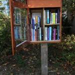 Sharon resident Liv Van Dyke's Little Free Library was open for patrons on a recent sunny day.