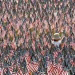 Hundreds of volunteers covered a vast swath of Boston Common with 37,000 American flags, one for each service member from Massachusetts killed since the Revolutionary War.