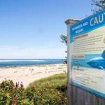 A sign in Chatham warned beachgoers of the presence of great white sharks last year.