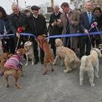 BOSTON, MA - 10/27/2016: Pols have gone to the dogs......( standing behind the blue ribbon L-R ) The ribbon cutting included Boston Councilor Michael Flaherty, Boston Councilor Annissa Essibi-George, former city of Boston mayor Ray Flynn, Boston Councilor Bill Linehan, Massport CEO Thomas P. Glynn, Mayor Marty Walsh, Congressman Stephen Lynch, State Senator Linda Dorcena Forry and State Representative Nick Collins. The Massachusetts Port Authority (Massport), elected officials and members of the South Boston community gathered to celebrate a new dog park for South Boston residents and their pets. Massport made a commitment to build a dog park for the community and tomorrow the East First Street Dog Park will become a reality. (David L Ryan/Globe Staff Photo) SECTION: METRO TOPIC stand alone photo