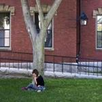 A student relaxed in Harvard Yard earlier this month.