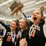 Newton North celebrates after taking home the Division 1 State Championship, after taking all 3 games against Hopkinton. .