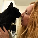 Rosie, a 16-year-old cat, was feral before Rachel Geller brought her home.