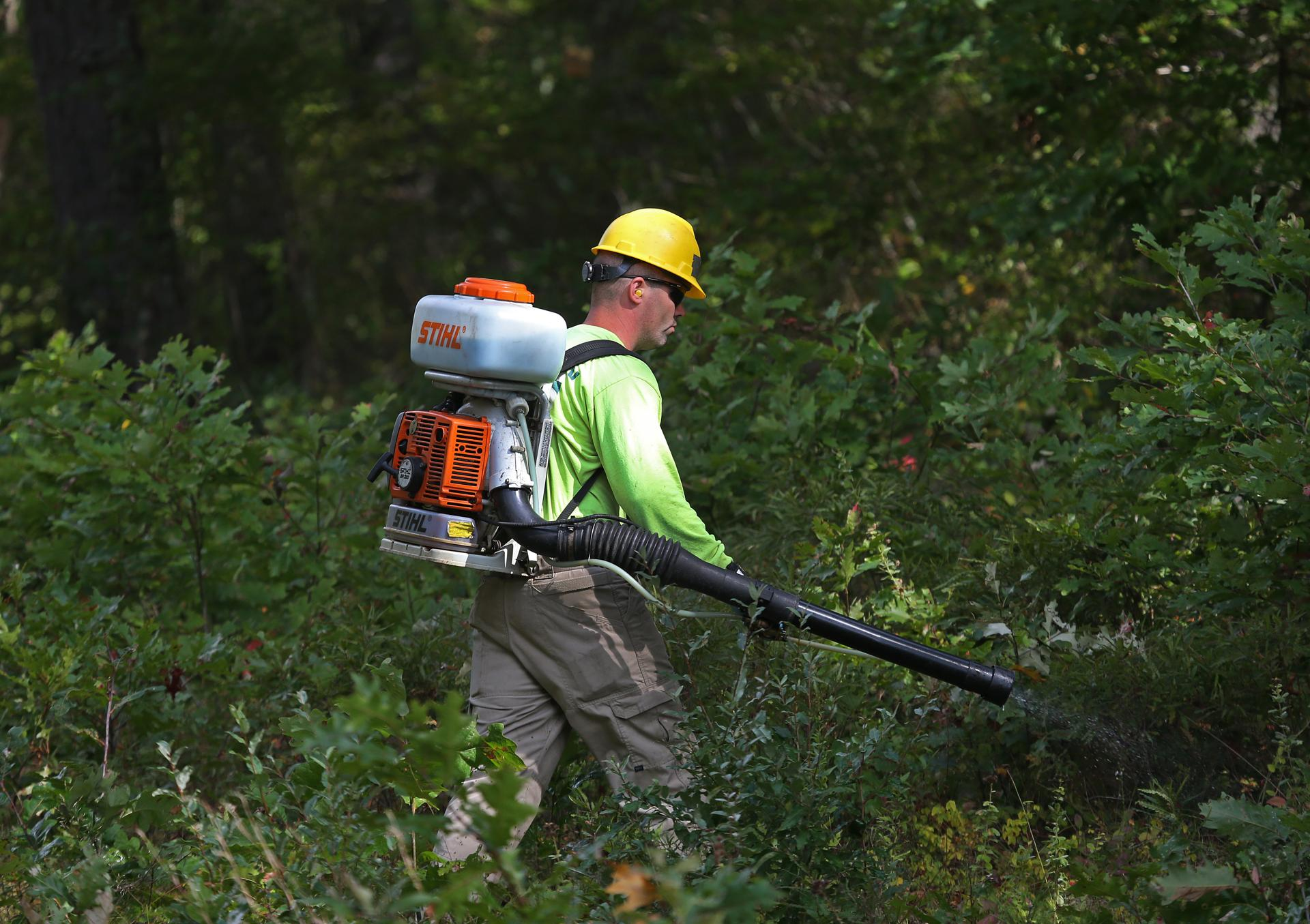 NStar says the state-sanctioned spraying is safe and the most effective means of managing the growth of trees on their property.