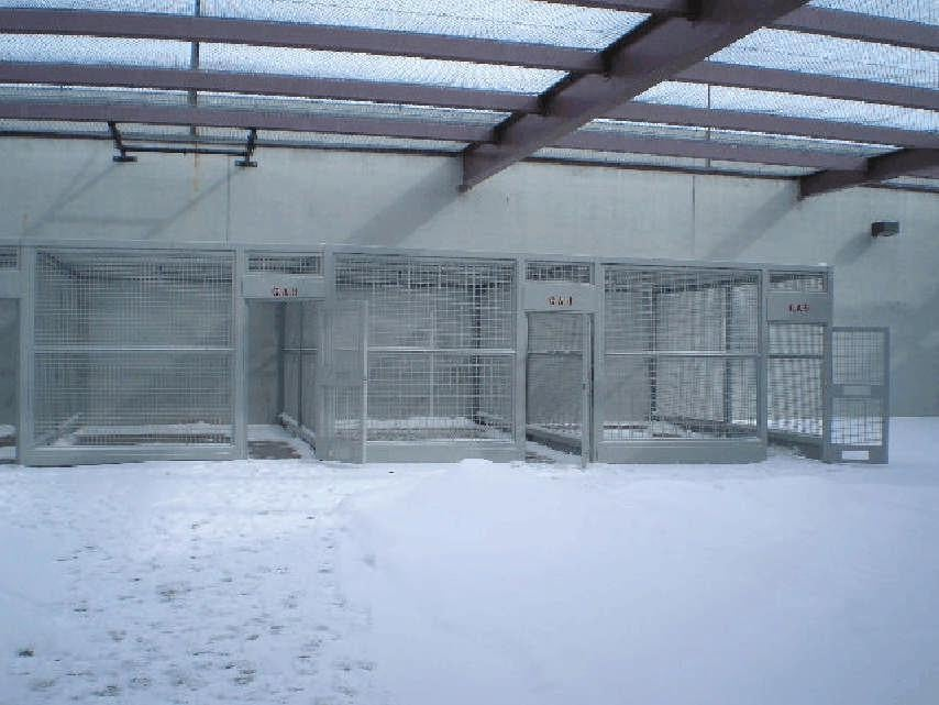 One exercise option for inmates is to walk in an outdoor cage.