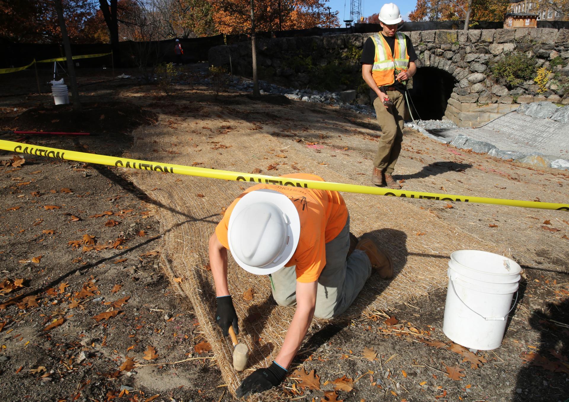 Brett Bourassa (left) and Jeff Rowett installed erosion fabric on wild flower seeds along the banks of the Muddy River.