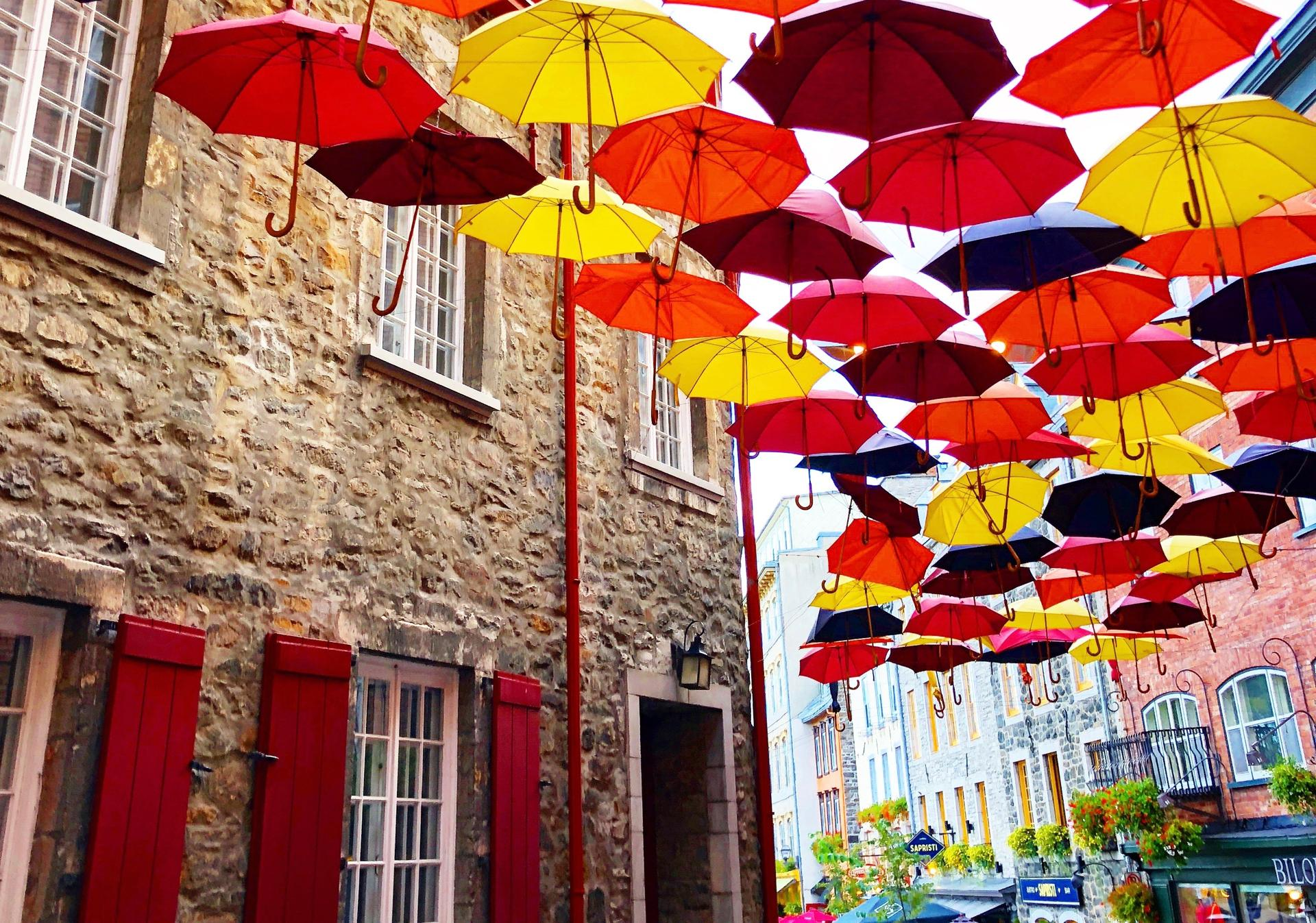 QUEBEC CITY, Sept. 29. I've spotted these umbrella art displays in several cities, but I was particulary fond of this one in Quebec. It seemed like a perfect match to the season and surrounding colors.