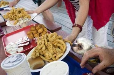 Tobi the dog sniffed at a fried clam dinner outside the Clam Box in Ipswich. It is one of several clam shacks on Route 133.