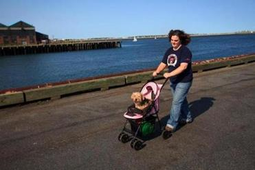 Berry and Nicholas enjoying a walk at the waterfront.