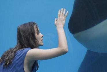 Marion Cotillard plays an orca trainer who is severely injured in an accident during a Marineland show.