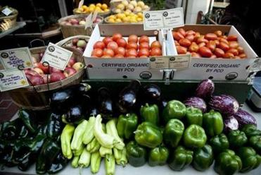 Produce sold at Enterprise Farm of Whately.