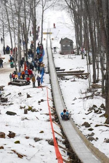 Competitors at the national toboggan championships can reach 40 m.p.h.