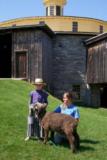 Staff member Laura Field, right, with a Shaker Village visitor and a resident sheep.