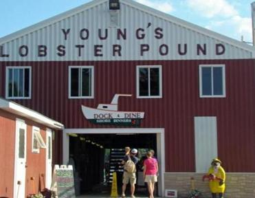 Young's Lobster Pound.