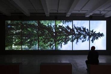 "Ahtila's ""Horizontal"" aligns six contiguous views of a tree."