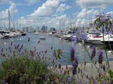 Around the port and marina in Punta del Este, on Uruguay's southern coast, are places to dine, to people-watch, to yacht-envy.