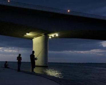 Fishing under the Sarasota bridge.