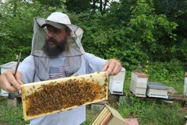 Jon Christie of Wild Mountain Apiaries in Asheville, N.C.
