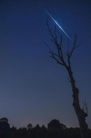 The Perseids meteor shower was seen from The Netherlands in August.