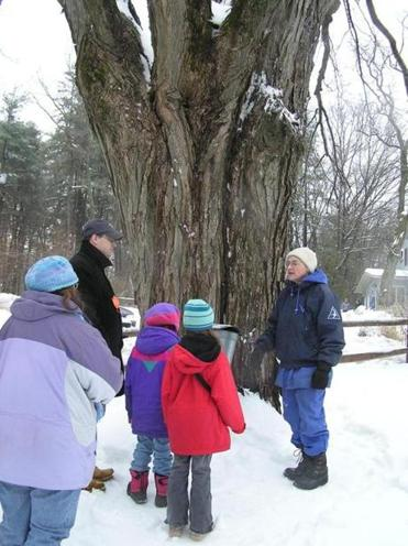Drumlin Farm Teacher Naturalist Eleanor shares information on tapping maple trees with visitors during a nature walk about maple sugaring in New England.