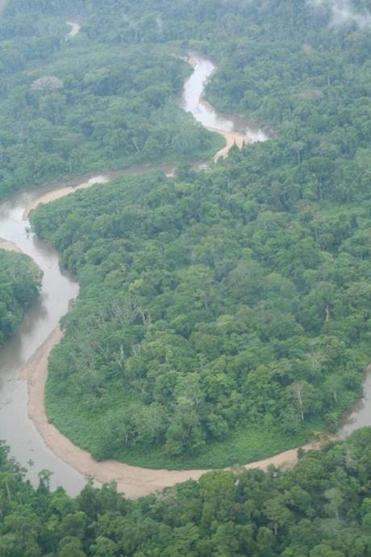 The Amazon as Seen from the Plane.