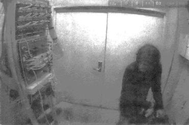 Video footage of allegedly shows Aaron Swartz in a wiring closet at MIT on Jan. 4, 2011.