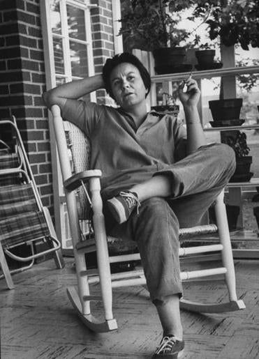 The publicity-shy Harper Lee, known as Nelle to intimates, granted the author rare extended access to her day-to-day life.