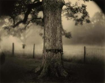 Sally Mann (American, born 1951), Deep South, Untitled (Scarred Tree), 1998, gelatin silver print, National Gallery of Art, Washington, Alfred H. Moses and Fern M. Schad Fund 20summerartpicks Sally Mann (American, born 1951), Deep South, Untitled (Scarred Tree), 1998, gelatin silver print, National Gallery of Art, Washington, Alfred H. Moses and Fern M. Schad Fund. Image © Sally Mann. Sally Mann: A Thousand Crossings at the Peabody Essex Museum These images are for press and educational use only in relation to the touring exhibition listed above; they must be identified and accompanied by the appropriate caption, in particular each imageÕs credit line, as below. Permission given 5/2/2018.
