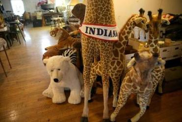 Stuffed animals rested in Indiana's former home.