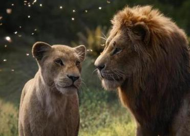 "Beyoncé voices Nala (left) and Donald Glover voices adult Simba in ""The Lion King."""