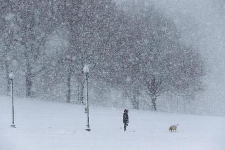 A person walked their dog in the snow on Boston Common.
