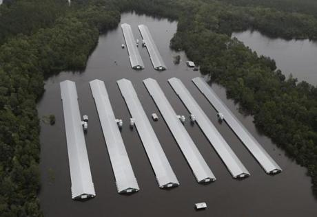 Chicken farm buildings are inundated with floodwater from Hurricane Florence near Trenton N.C