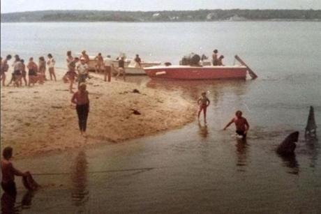 "A photo from the ""Jaws"" set."